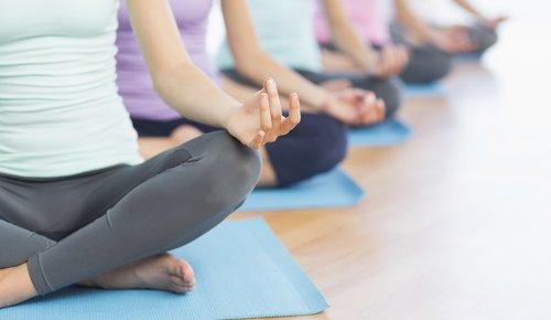 Aufgereiht sitzen Frauen hintereinander während einer Yogastunde. Man sieht ihre Köpfe nicht, dafür den Lotussitz.