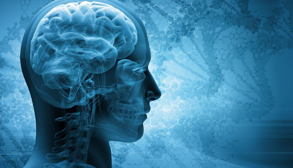 Mit neuronalen Kurzzeit-Coaching-Methoden wie wingwave oder emotionSync gegen emotionale Blockaden