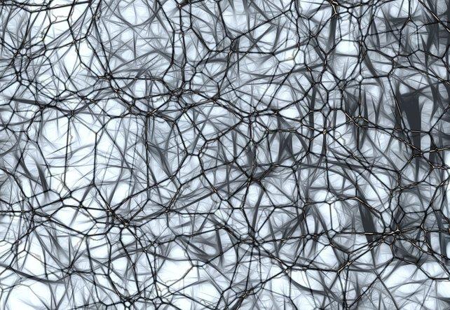 Ein Netzwerk aus astartigen Gebilden, als Sinnbild für Neurofeedback