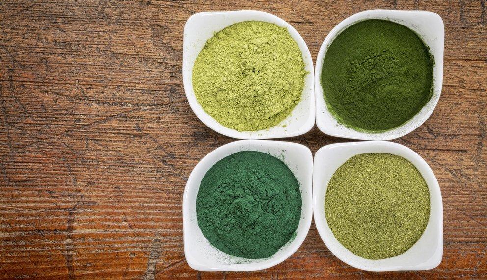 Moringa Pulver in vier unterschiedlichen Farben