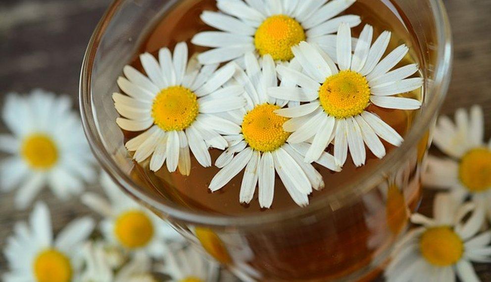 Naturheilkunde Blume