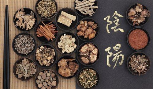 Mehr Gleichgewicht dank der Traditionellen Chinesischen Medizin